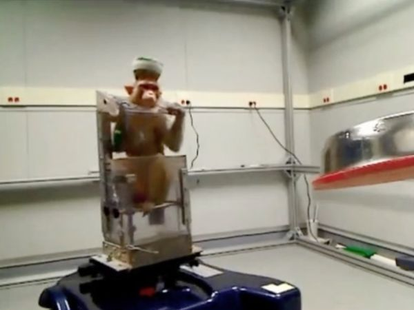 Monkeys Drive Wheelchairs Using Thought Alone. #technology www.agencyattorneys.com