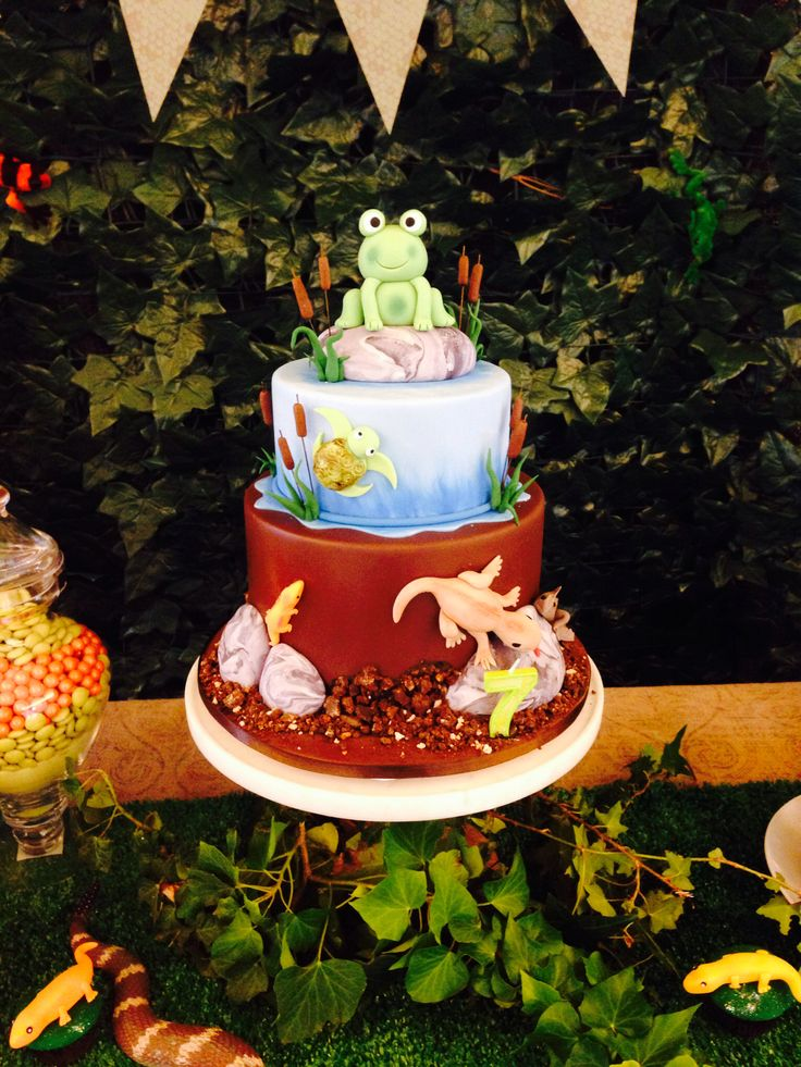 Reptile birthday cake by Ab Fab Cakes