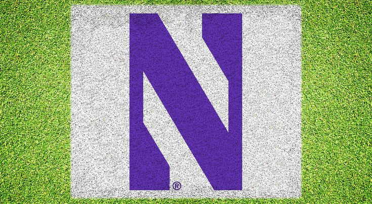 $99.95  PRODUCT DETAILS Lawn-Safe Spray Paint Included: 2 Purple, 2 White Reusable Storage Container Product Number: NWOOS-001 SIZE of Stencil: Width = 5 feet 5 inches Height = 3 feet 9 inches