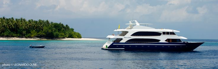 MY DUKE OF YORK THE BEST CRUISE IN MALDIVES