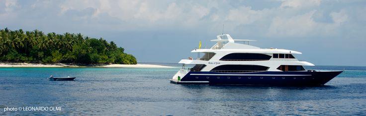 MY DUKE OF YORK THE BEST CRUISE IN MALDIVES
