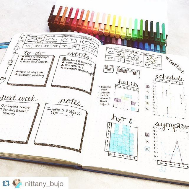 Bullet Journal Ideas ~ Tracking Healthy Eating, Illness Symptoms, To Do Lists, Appointments And Reminders ~ Personalise Tour Planner