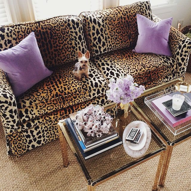 Cute Leopard Print Couch W/ Purple Accent Pillows