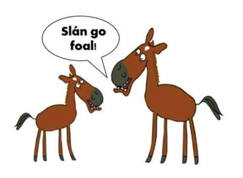 Slán go fóill! (Bye for now)