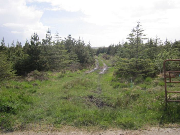 Slieveaneena, Moycullen, Co. Galway - Agricultural Land For Sale