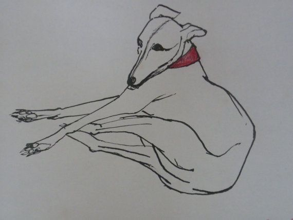 Ink drawing of dog with red collar.  Reproduced from by SJImages, £10.00