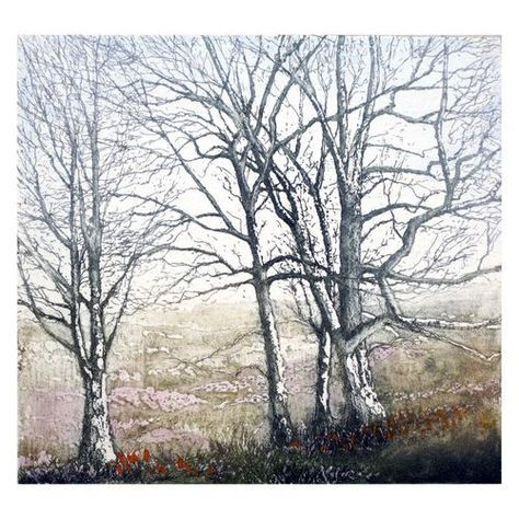 Silver Birches -Jo Barry etching #tree #art