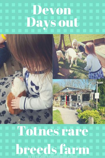 Family days out in Devon...........Review of our family day out at Totnes rare breeds farm.