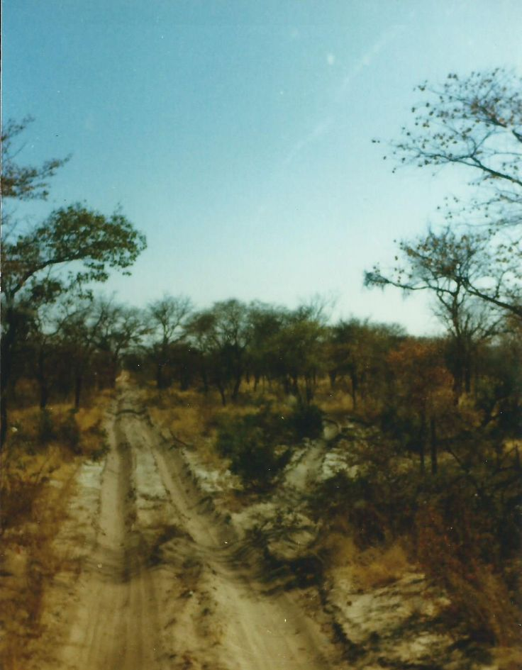 Roads in Angola Operation Modular / Hooper 1987-1988 - Derik Midgley