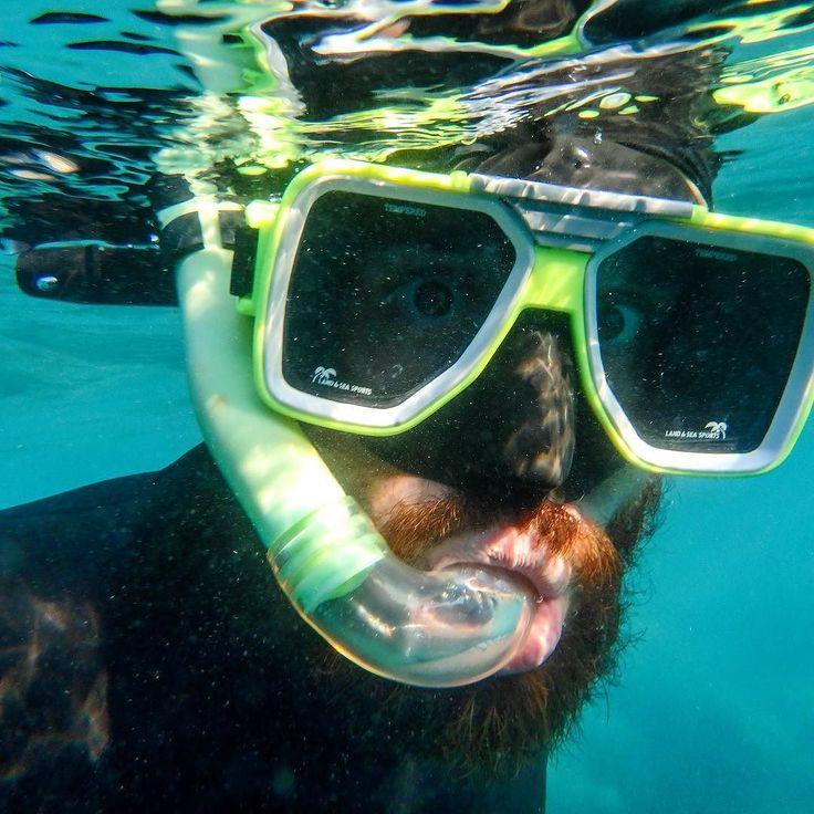 Here's looking at you squid  #snorkeling #snorkeldork #maskedman #underwater