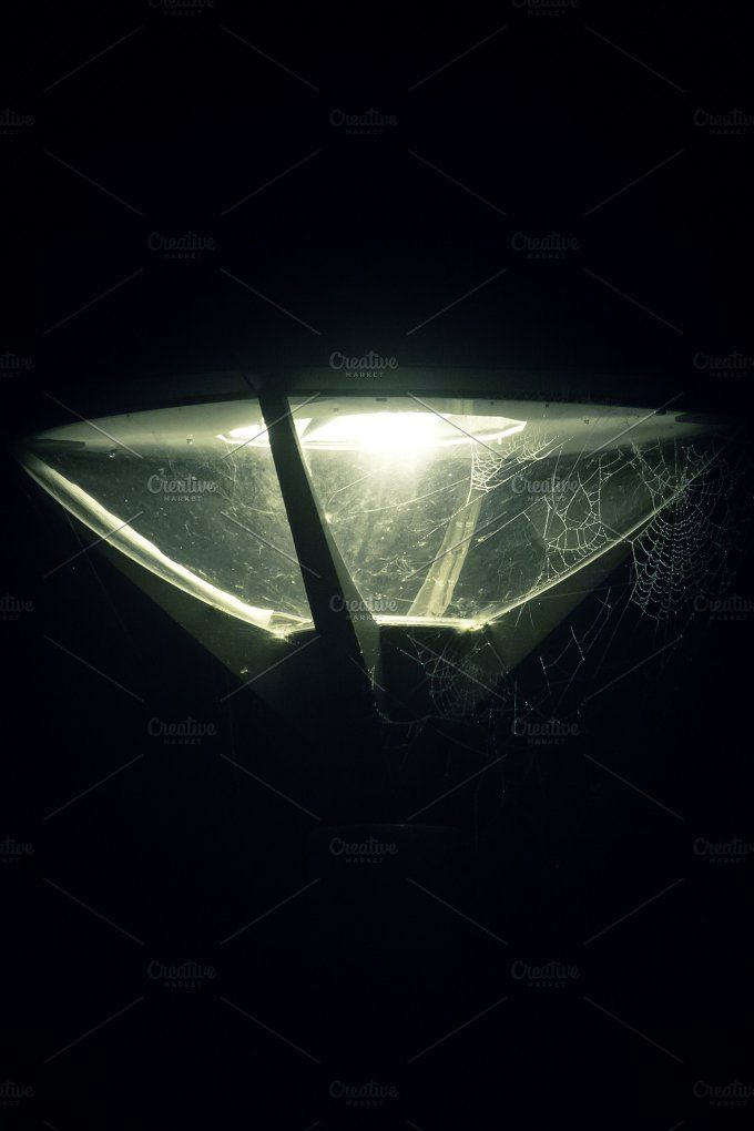 Spider Web in Streetlight by The Cromarie on @creativemarket