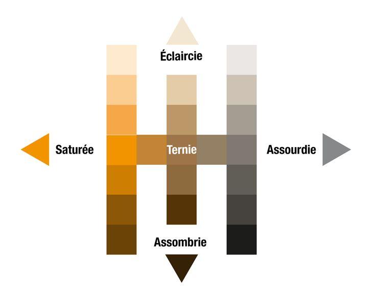 Les 25 meilleures id es concernant couleur compl mentaire - Couleur complementaire gris ...