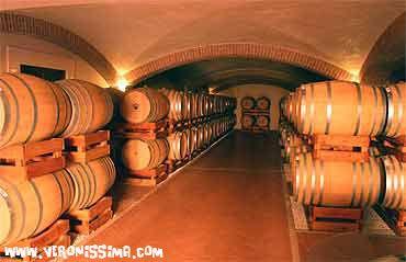 Lugana Wine Tours: Zenato |   via Veronissima