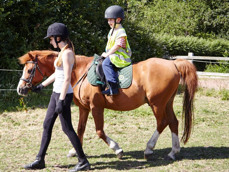 All You Need To Know Before Taking Horse Riding Lessons