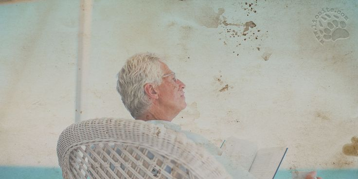 """Doppio ringraziamento al bravissimo Luigi Maria Corsanico: uno per la splendida interpretazione di questa poesia ed uno per avermi fatto conoscere questo autore. Lascio a voi giudicare la dolcezza e la malinconia di questa poesia che tocca il cuore.  Marcello Comitini - Il miele dei ricordi """"Una ragazza dagli occhi neri e lucidi tiene per mano il vecchio che le cammina a fianco strascicando attento i suoi ricordi. Tiene una sedia ripiegata [segue]""""  #MarcelloComitini, #ricordi…"""