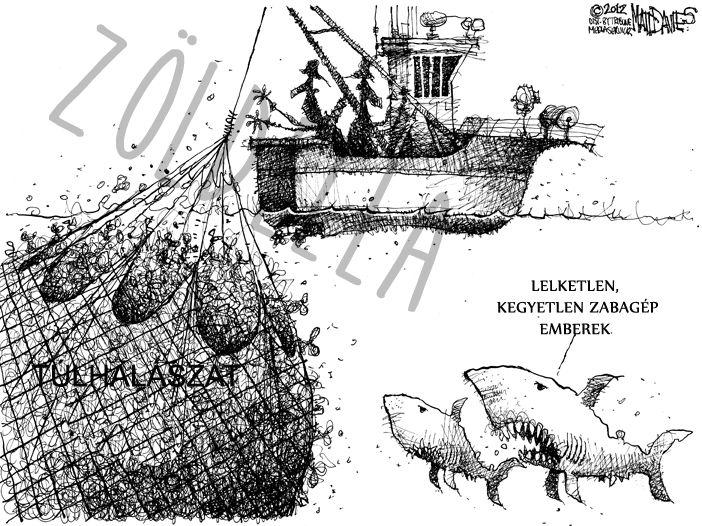 Óceáni túlhalászás...