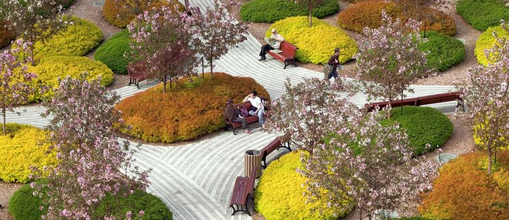 Esplanade du Palais des Congrès de Montréal by Claude Cormier + Associes où les formes en boules se répondent, entre houpiers et arbustes et vivaces
