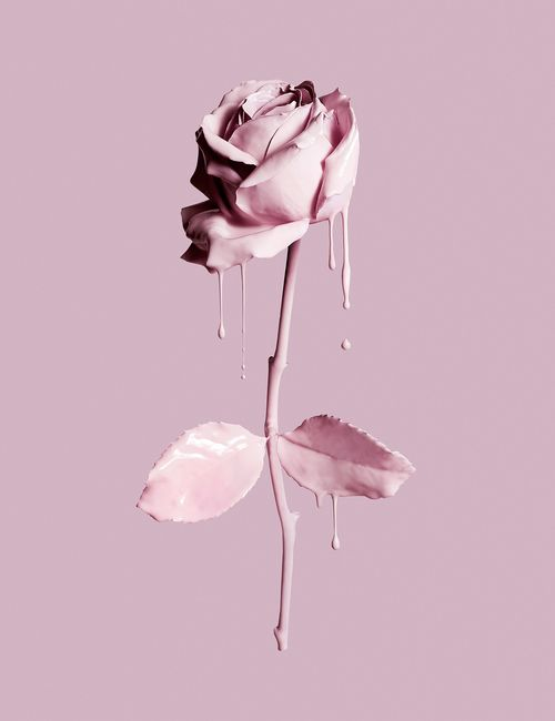 Cosmetics make up makeup pink drip rose. Luxury goods still life photo. By Josh Caudwell commercial advertising product editorial photographer.London, New York, Paris, Milan.