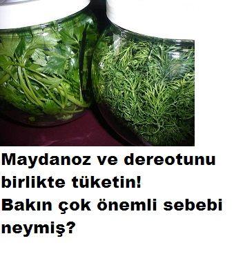 Kanser hastalığına karşı 2 yeşillik.Yapılan araştırmalarda bu 2 yeşilliğin aynı anda yenmesi kanser hastalığını engellediği ortaya çıktı