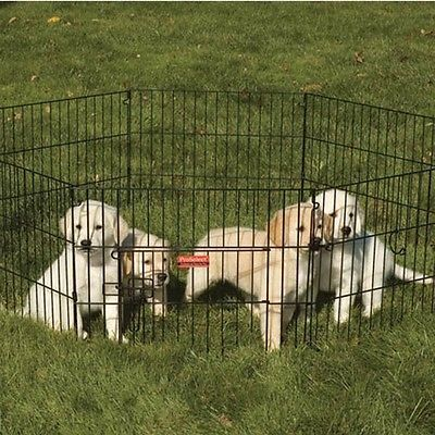 Buy Puppy Pen Gate Exercise Playpen Small Dogs Crate Fence Portable Metal  Outdoor At Online Store
