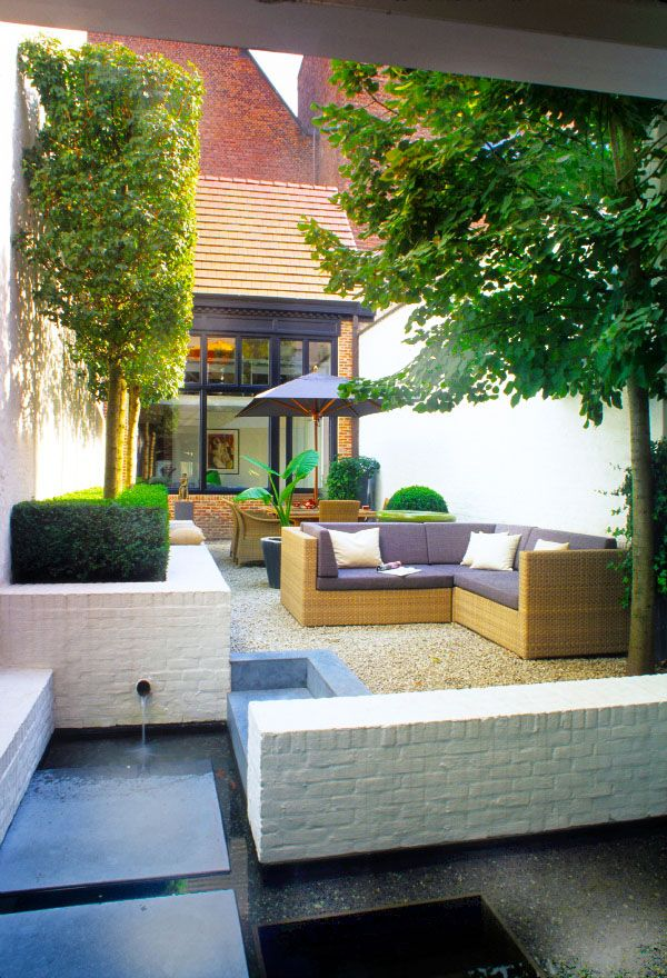 This small stylish courtyard garden with topiarised trees for Small shady courtyard ideas