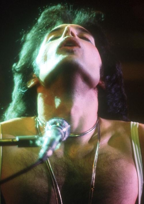 Freddie Mercury - beautiful from all angles!!