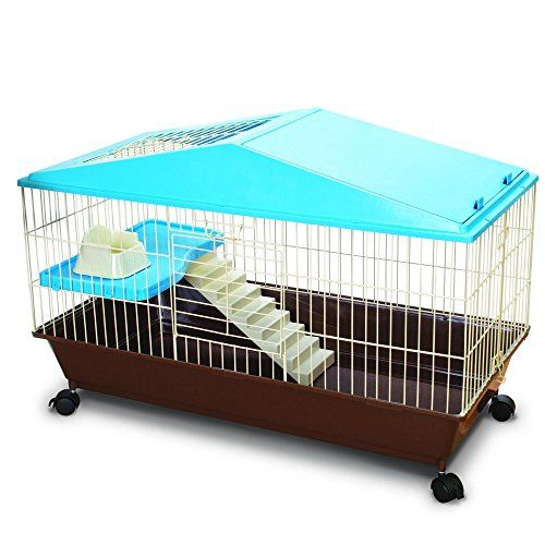 Ware Manufacturing Animal House 35 Amazon Best Buy Petsuppliesbestrated Small Animal Cage Small Pets Pet Cage