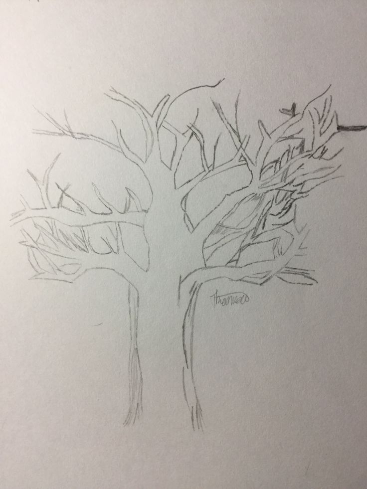 The Nemeton, from Teen Wolf. I like this because one way it can be a tree and the other it is roots