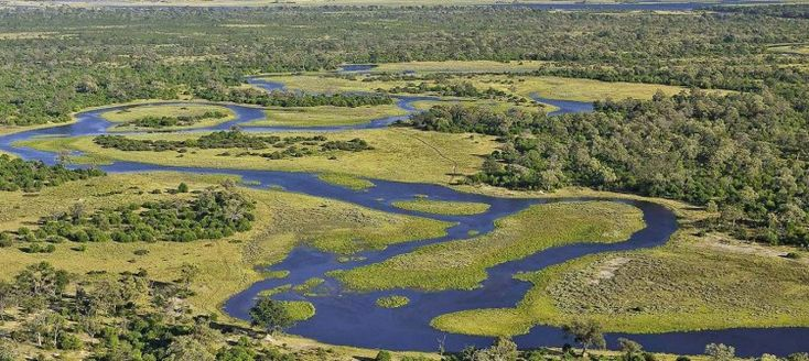 Situated between the Okavango Delta and the Chobe National Park lies the Savuti and Linyanti safari areas. The area is made p of vast open grassland, swamps and sandy plains. The region is well known for its superb lion viewing and will not disappoint. Along with a remarkably high density of elephants the area also hosts one of Africa's largest annual zebra migrations occurs where the herds move from the Linyanti to the Savute and back in search of better grazing.