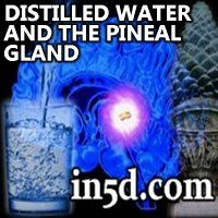 Andrew Norton Webber's research on the benefits of distilled water will make you think twice about any water you're currently drinking. Plus, your pineal gland will thank you for this knowledge!
