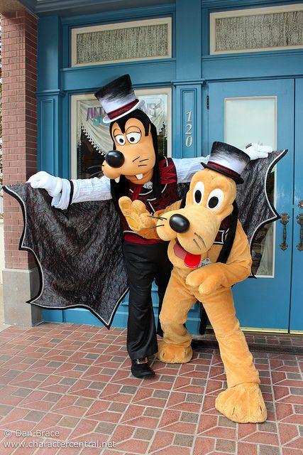 Meeting Halloween Goofy and Pluto