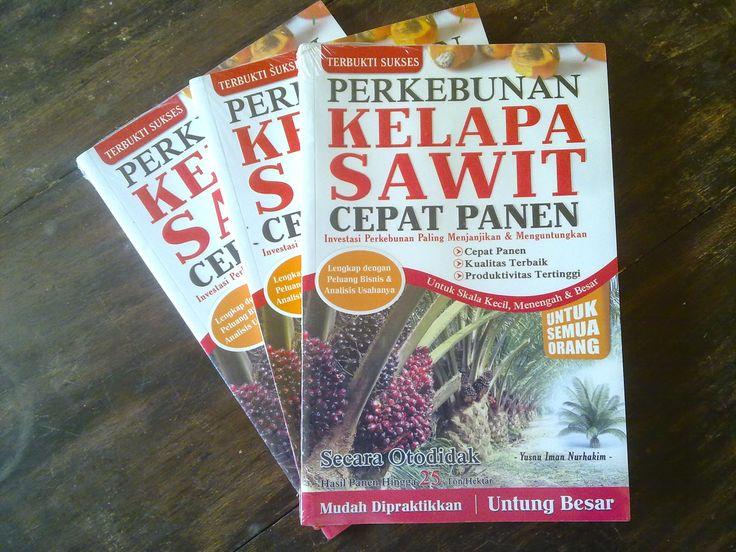 Indonesia Tourism: Perkebunan Kelapa Sawit Cepat Panen