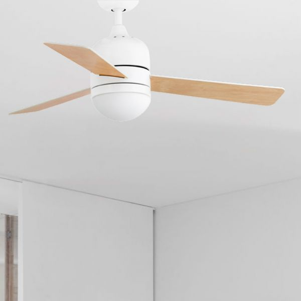 Schlichter Deckenventilator Cebu In Weiss Ahorn Deckenventilator Ventilator Und Deckenleuchten
