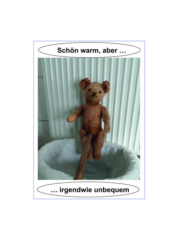 Nach dem notwendigen Duschbad musste der kleine Bär wieder getrocknet werden, schließlich war schon Winter. Ist gelungen.
