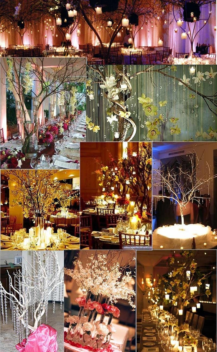 Hanging paper lanterns from branches
