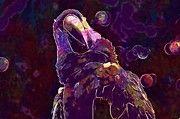 "New artwork for sale! - "" Macaw Ave Birds Colors Exotic Bird  by PixBreak Art "" - http://ift.tt/2uuePjn"
