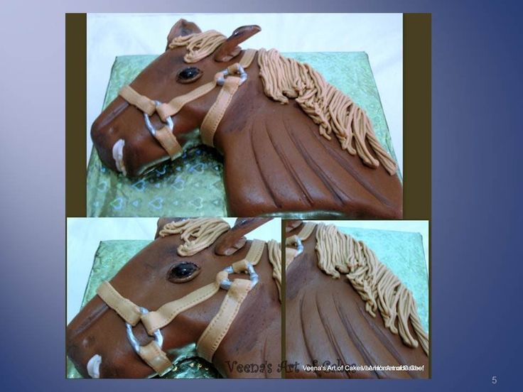 How to make  a 2D Horse Cake