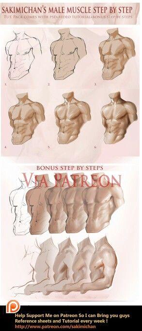 근육 량에 따라 다른 명암