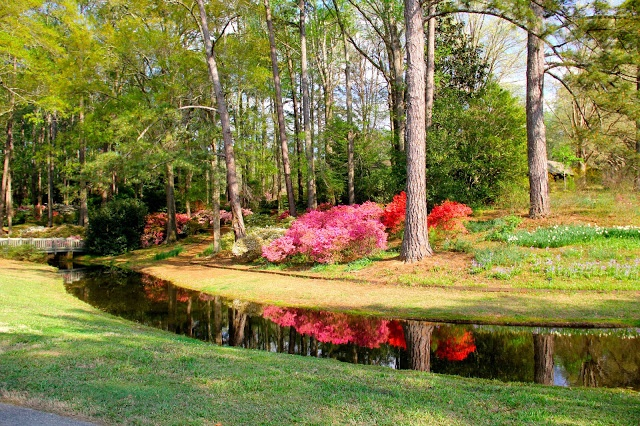 75 Best Images About Life In Atlanta On Pinterest Restaurant Augusta National Golf Club And