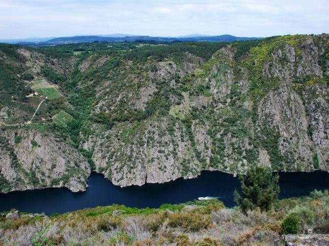 GALICIA - Bosques de Galicia - Ribeira Sacra