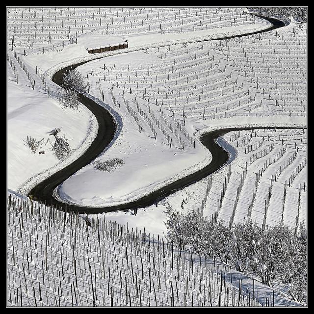 Langhe, Piedmont