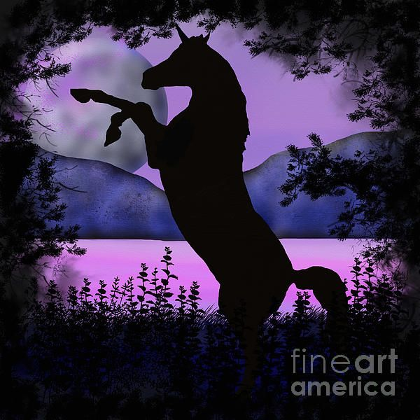 The night of the Unicorn. Digital art piece by Tracey Lee Art Designs