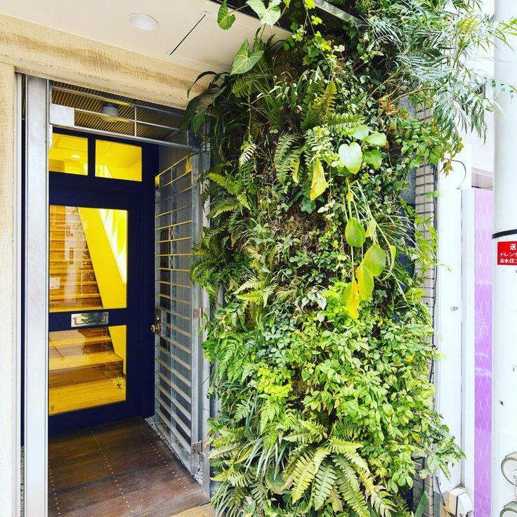 "shop&gallery SOMETHING エントランス壁面緑化 ""shop&gallerySOMETHING"""
