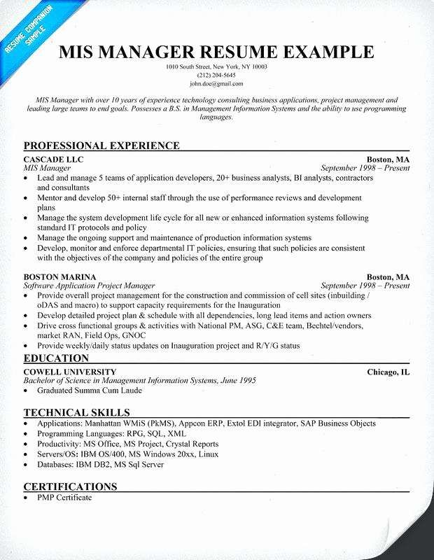 Excel Xml Format Resume Template Word Example Words Ibm Personal Statement