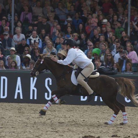ロイヤルウィンザーホースショー(Royal Windsor Horse Show) DAKSが協賛する「ポニー・クラブ・インターナショナル・マウンテッド・ゲーム(Pony Club International Mounted Games)」の様子  Photo by:富岡秀次(RSVP Butlers Ltd)  DAKS公式HP「英国情報」でもご紹介しています。URL:http://www.daks-japan.com/englishinfo/vol40.html  #DAKS #royalwindsor #ホースショー