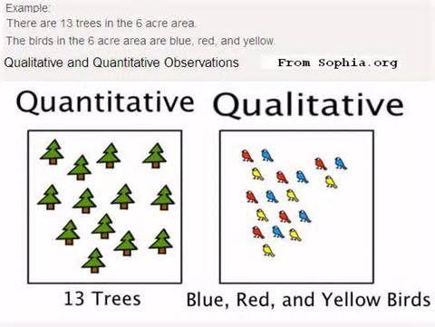 8 best images about Scientific Method on Pinterest | Scientific ...