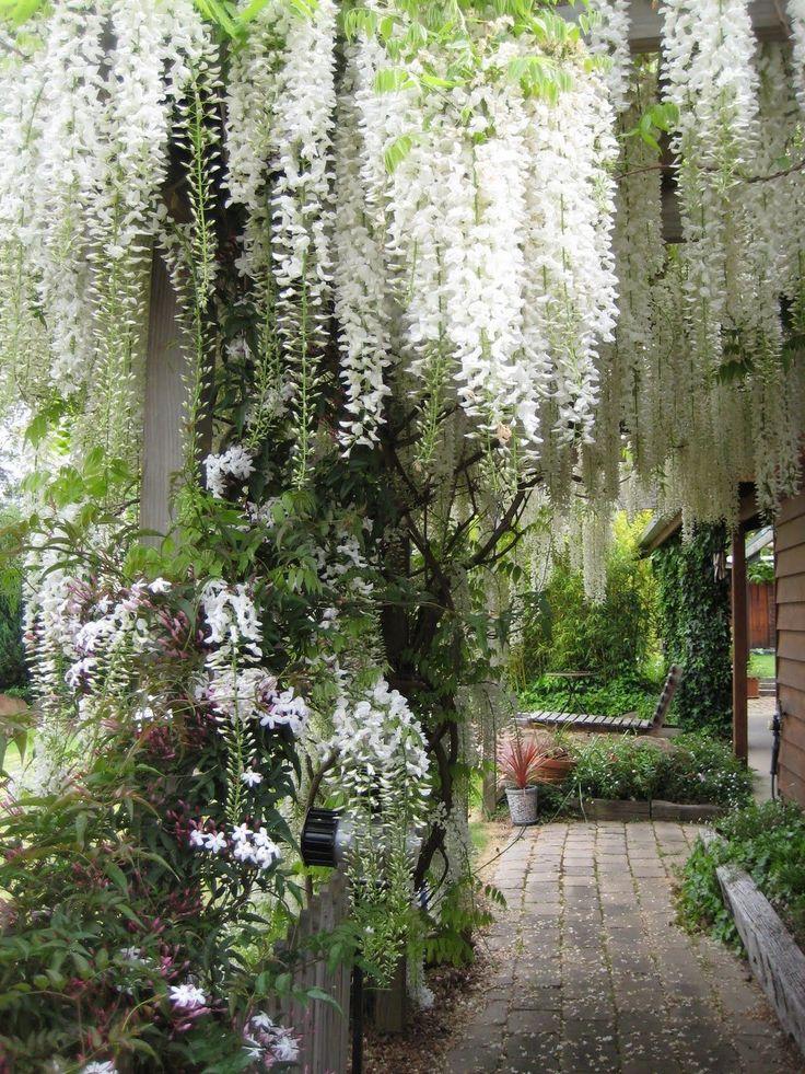 29 Beautiful Moon Garden That Will Transform Your Yard https://www.onechitecture.com/2018/03/03/29-beautiful-moon-garden-will-transform-yard/