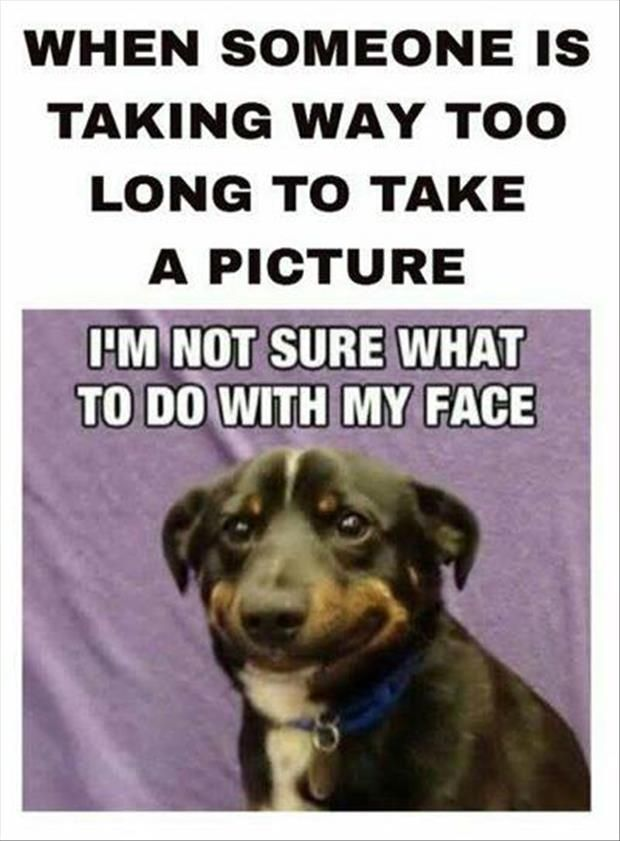 Funny Pictures Thursday - November 27, 2014