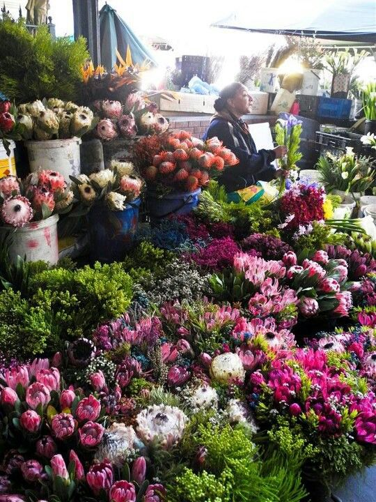 Flowermarket Cape Town -  I would probably go crazy in this flowermarket.