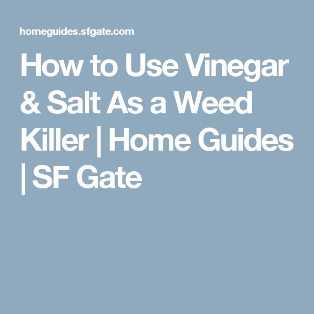 How to Use Vinegar & Salt As a Weed Killer | Home Guides | SF Gate
